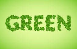 Vector green word, made from green leaves vector illustration Royalty Free Stock Photo