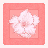Vector greeting card. Stock Photos