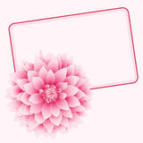 Vector greeting card. Vector illustration greeting card with pink dahlia Royalty Free Stock Photography