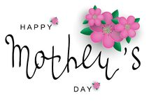 Vector greeting card with Mother`s Day. Black calligraphy An inscription with pink flowers. Stock Photos