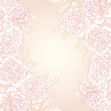 Vector greeting card with peonies. Vector illustration for greeting card with peonies Royalty Free Stock Image