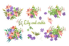 Vector greeting card pink lily and violet arabis flower arrangement Stock Photos