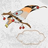 Vector greeting card with singing bird. Can be used  card, invitation, background Royalty Free Stock Images