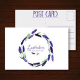 Vector greeting card with watercolor lavender. Royalty Free Stock Photo