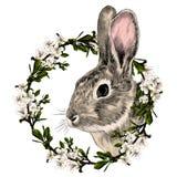 Vector gris principal del bosquejo del conejo Foto de archivo