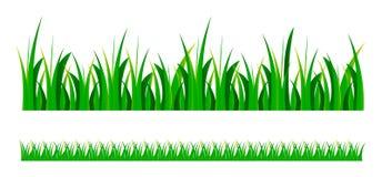 Vector groen gras Royalty-vrije Stock Afbeeldingen