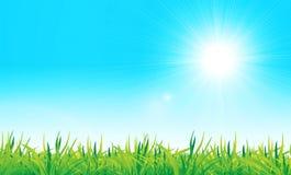 Vector groen gras en blauwe hemel royalty-vrije illustratie