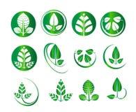 Vector groene blad vastgestelde ronde cirkel, ecologie, aard, milieu, organische pictogrammen, bedrijfsembleemgrafiek Stock Afbeeldingen