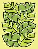Vector groene bladeren. Royalty-vrije Stock Foto's
