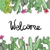 Vector Groene cactus bloemen botanische bloem Gegraveerd inktart. Het ornamentvierkant van de kadergrens royalty-vrije illustratie