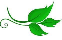 Vector groene gekleurde bladeren stock fotografie