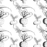 Vector groenten Stock Afbeeldingen