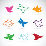 Vector group of bird design on white background. Bird Icon. Stock Images