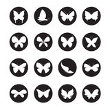 Vector group of butterflies in the circle Royalty Free Stock Photo