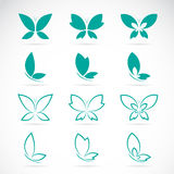 Vector group of butterfly Royalty Free Stock Image