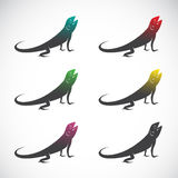 Vector group of chameleon. Vector group of chameleon on white background Royalty Free Stock Photos