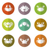 Vector group of crab in the circle Royalty Free Stock Photography