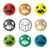 Vector group of dog face in the circle Stock Images