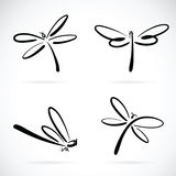 Vector group of dragonfly sketch. Stock Photos