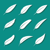 Vector group of feather white Royalty Free Stock Photo