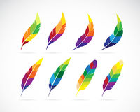 Vector group of an feathers design Stock Photography