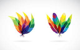 Vector group of an feathers design. On white background Stock Images
