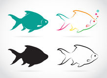 Vector group of fish. On white background Stock Photos