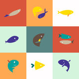 Vector group of flat fish icons. Royalty Free Stock Photos