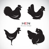 Vector group of hen design Royalty Free Stock Images