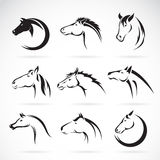 Vector group of horse head design Royalty Free Stock Photography