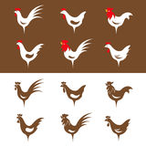 Vector group image of chicken Stock Photos