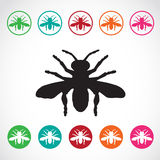 Vector group of insects on white background. Royalty Free Stock Photography