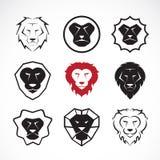 Vector group of an lion head design Royalty Free Stock Photos