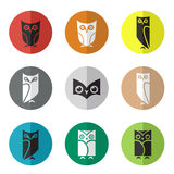 Vector group of owl in the circle Stock Image