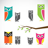 Vector group of owls and branch Royalty Free Stock Image