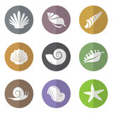 Vector group of shellfish in the circle Stock Photo