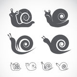 Vector group of a snail Royalty Free Stock Images