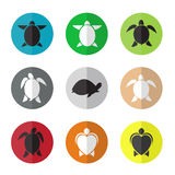 Vector group of turtle in the circle Stock Photography