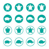 Vector group of turtle in the circle stock illustration