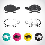 Vector group of turtle Royalty Free Stock Images