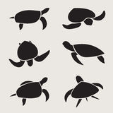 Vector group of turtle Royalty Free Stock Photos