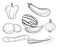 Vector group of vegetables and fruits Stock Image