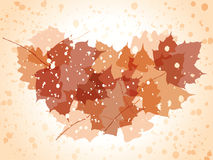 Vector grunge autumn background. Royalty Free Stock Photos