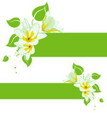 Vector grunge floral backgroun. Vector grunge floral plant background Stock Photo