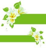 Vector grunge floral backgroun Stock Photo