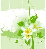 Vector grunge floral backgroun Stock Photography