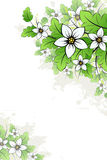 Vector grunge floral background Stock Photography