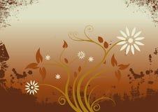 Vector grunge floral design Stock Images
