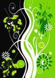 Vector grunge floral design Stock Photos
