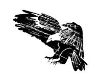 Vector grunge silhouette of flying eagle. Black grunge silhouette of flying eagle. Vector illustration vector illustration